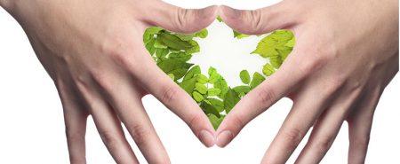 Dietética, nutrición y seguridad alimentaria para restauración